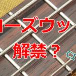 CITESアップデートにより楽器に限りローズウッド解禁の可能性