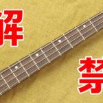 CITES改定によりローズウッドを使った楽器が輸出入規制から免除に 適用は12月から